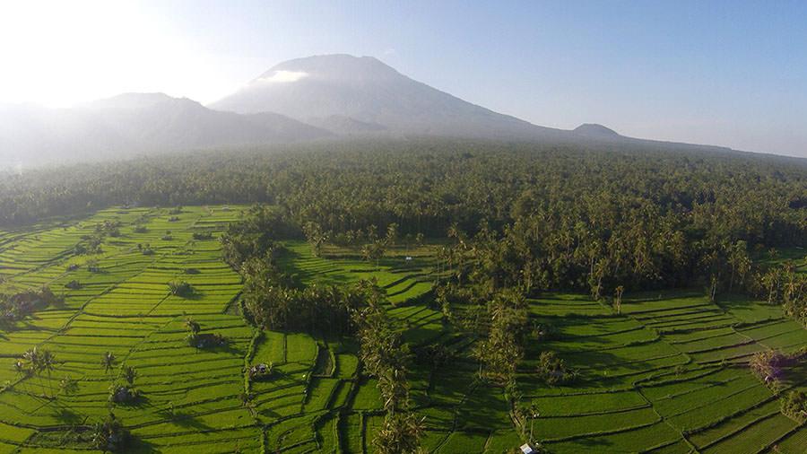 Der Mount Agung mit Reisterrassen auf Bali (September)